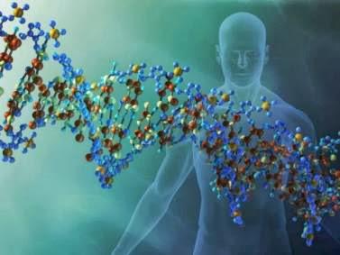 Ανακάλυψαν την «πηγή της νιότης» στο DNA