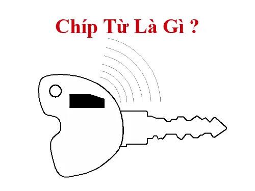 chip-tu-xe-vespa-la-gi