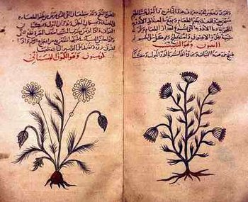 Unani-tibbi remedies (the prophetic medicine) - Weekly series