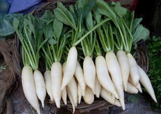 sayuran peninggi badan