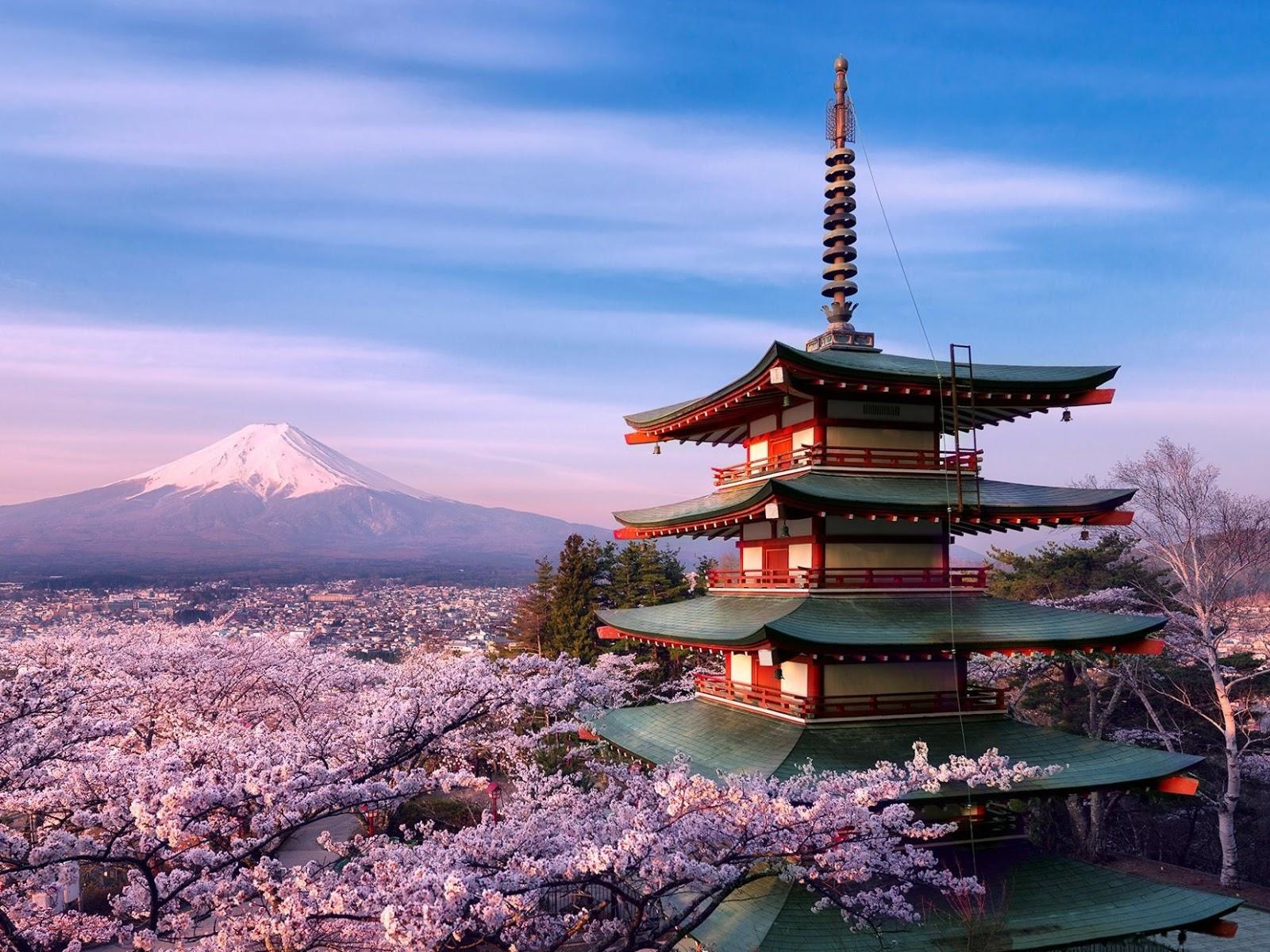 Clima Piante e Paesaggi del Giappone  Il Gusto Della Natura