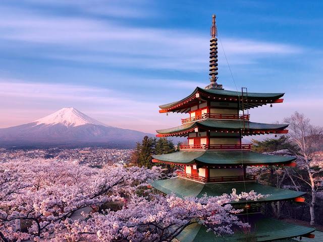 Fuji e Ciliegi Giapponesi