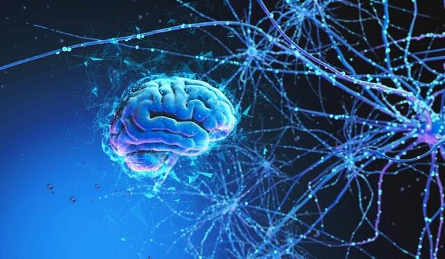 دراسة: إتقان مهارة جديدة يعيد سلك عقلك للأفضل
