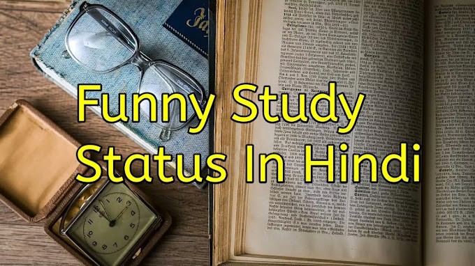25+ Funny Study Status In Hindi For Whatsapp With Image