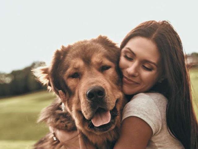 Mujeres duermen mejor con el perro que con la pareja