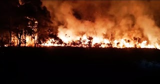Kebakaran Lahan di Desa Juru Sebrang