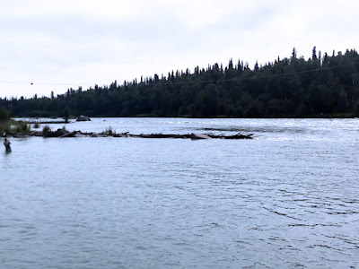 Our Spot Fishing by the Boat Launch at Swiftwater Park, Soldotna, Alaska