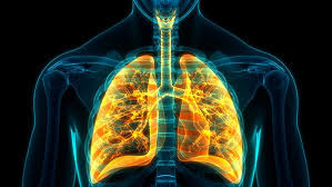 .Respiratory system infections and chronic lung disease