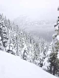Crest Mountain on Vancouver Island offers amazing adventure opportunities,