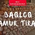 Produsen Baglog Jamur Tiram di Medan