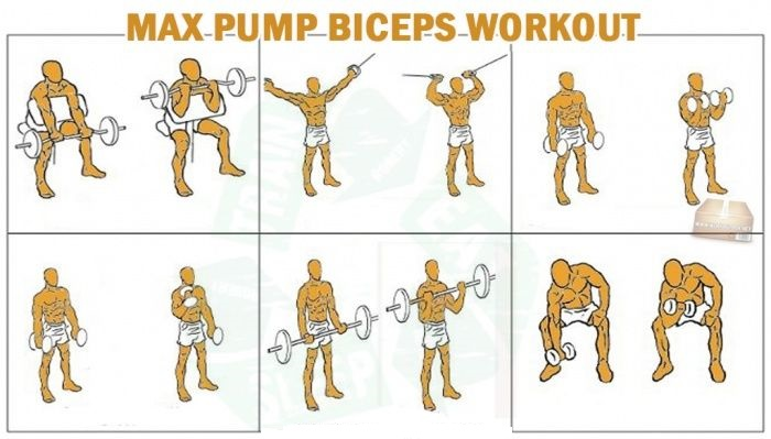 Supersize Your Arms - Bicep Training - all-bodybuilding.com