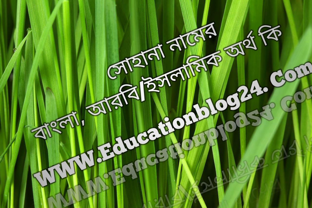 Sohana name meaning in Bengali, সোহানা নামের অর্থ কি, সোহানা নামের বাংলা অর্থ কি, সোহানা নামের ইসলামিক অর্থ কি, সোহানা কি ইসলামিক /আরবি নাম