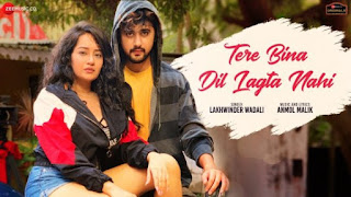 Tere Bina Dil Lagta Nahi Lyrics Lakhwinder Wadali | Bhavika x Yadit