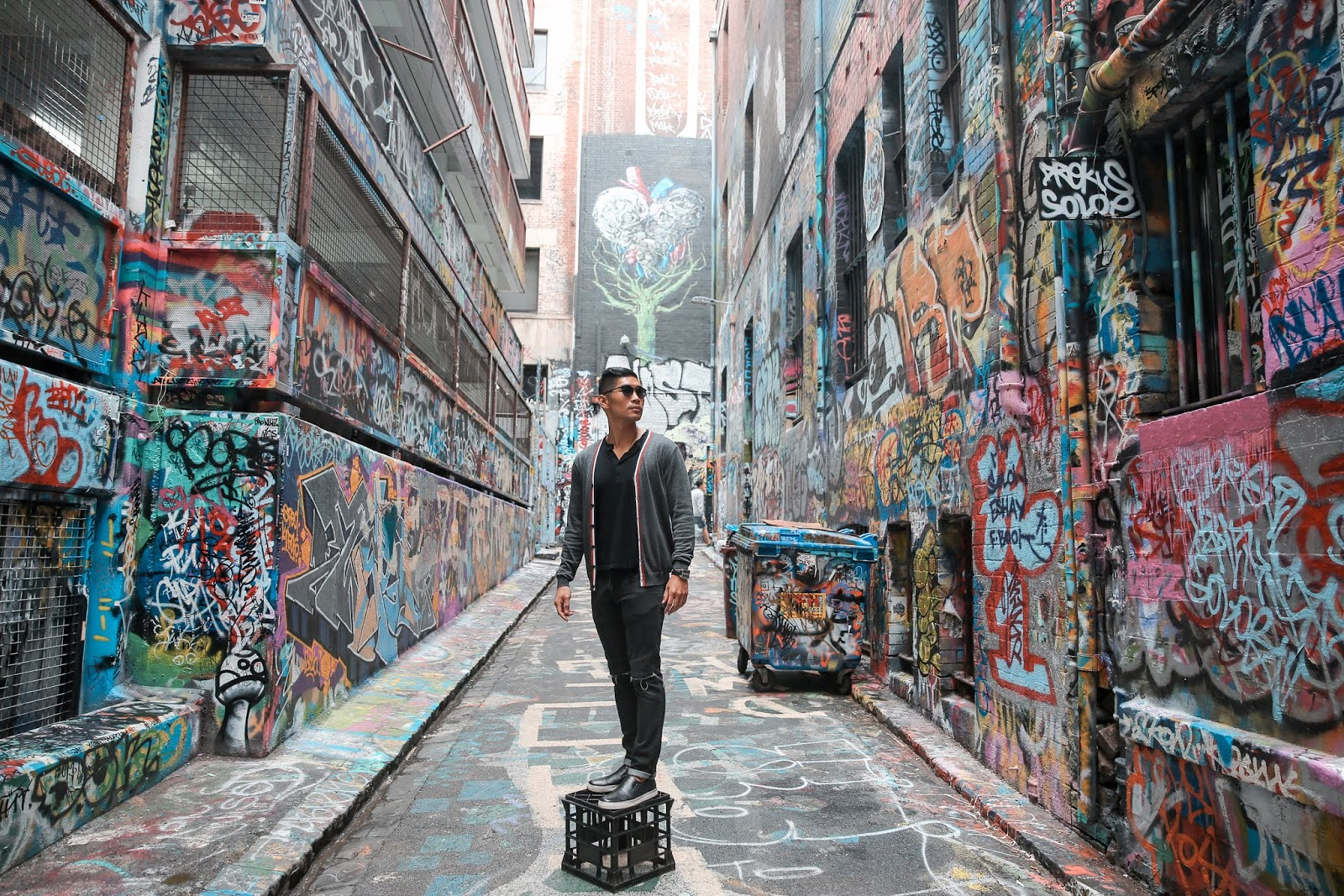 Hosier Lane in Melbourne, Leo Chan