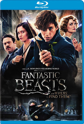 Fantastic Beasts and Where to Find Them [2016] [BD25] [Latino]