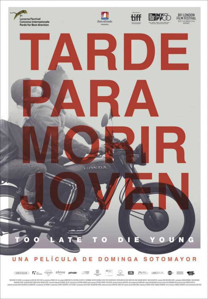 too late to die young poster