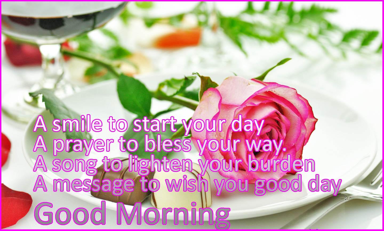 Good Morning Zombie Tips : Good morning n night tips february