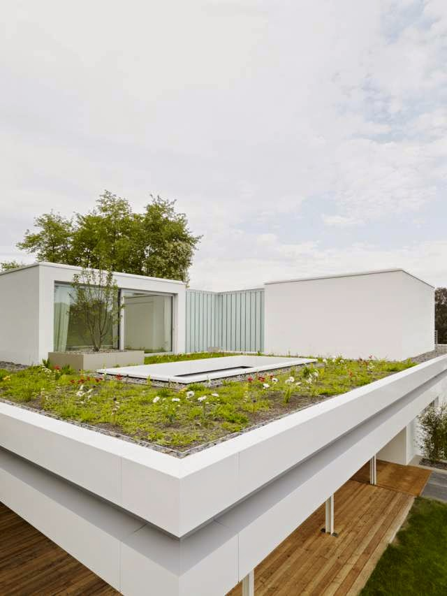 Modern house with grass roof house s modern home - What is a contemporary home ...