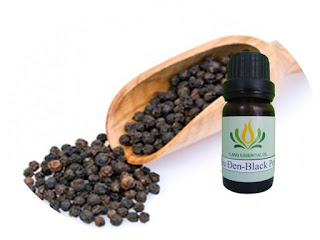 Tinh dầu tiêu đen nguyên chất