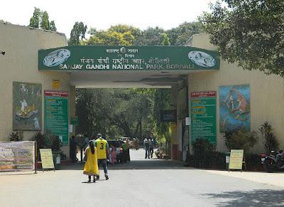 Sanjay Gandhi National Park in Mumbai