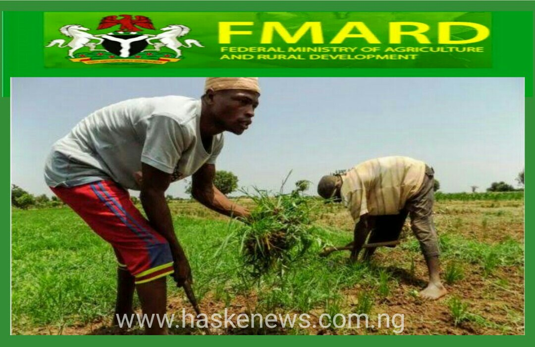 Yaushene Za'a Fara Bayarda Takin Gona na AFJP Farmer