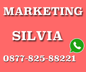 sales marketing silvia