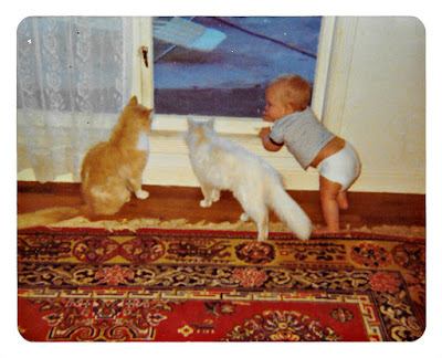 Vintage picture of a baby and two cats, taken at 1776 Sweetwood Drive in Broadmoor in the late 1970's.