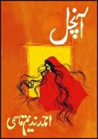 Aanchal Pdf Urdu Novel