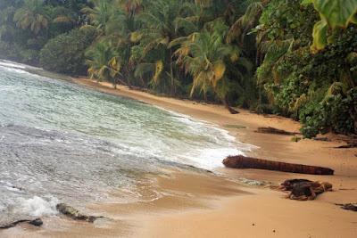 Playa en el Caribe de Costa Rica