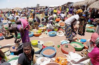 Foodstuff Prices Crash In Rural Areas Of Taraba State