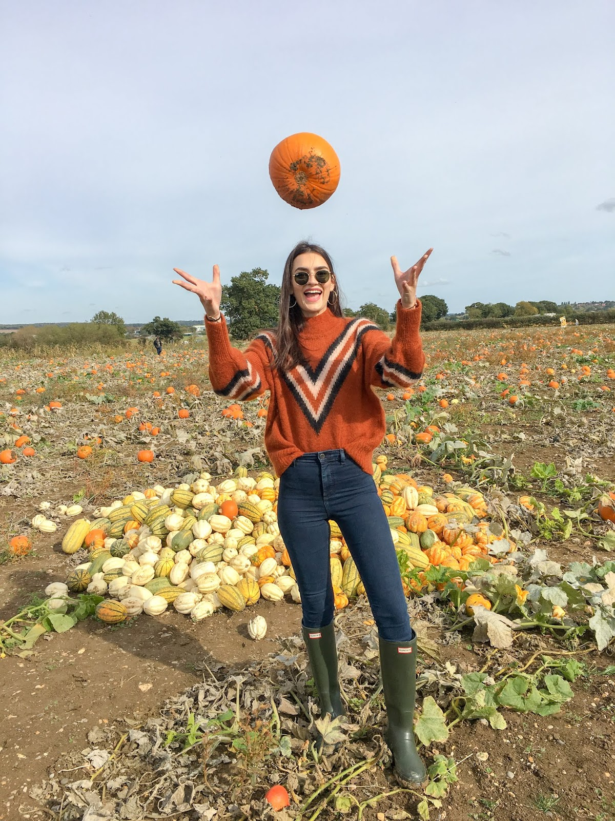 peexo foxes farm produce london pumpkin farm