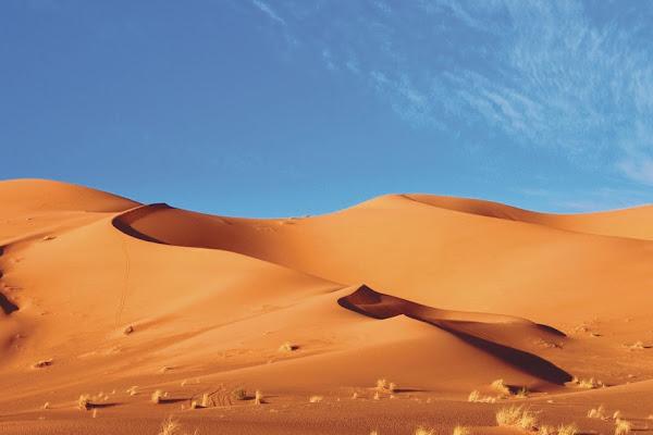 الصحراء الامطار