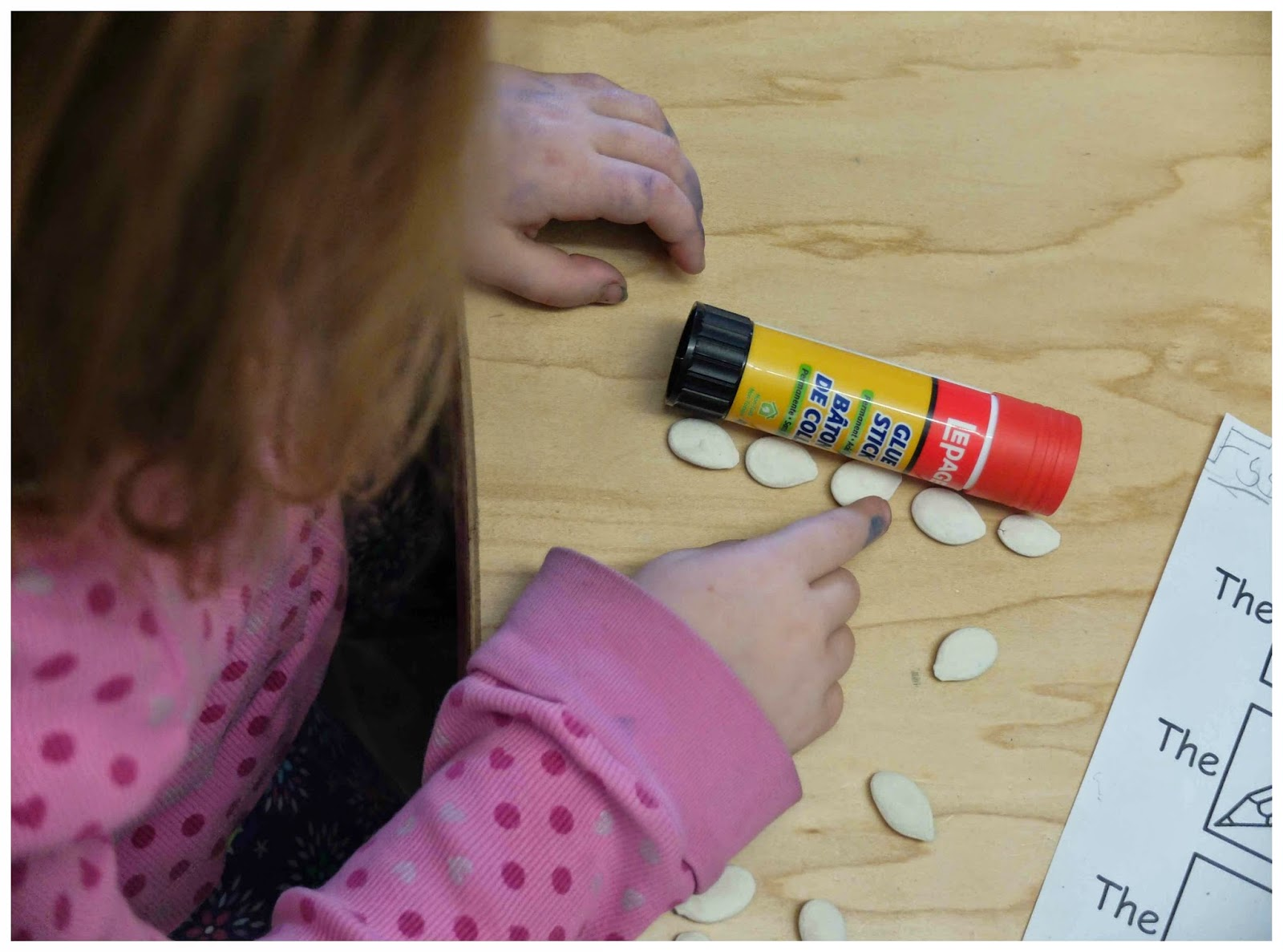 Pumpkin Seed Measuring