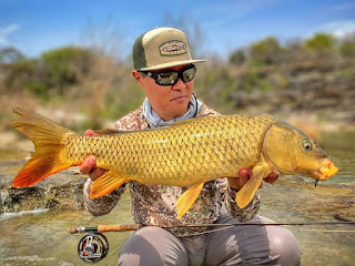 Odom Wu, Interview with Odom Wu, Carp, Carp on the Fly, Carp Fishing in Texas, Texas Carp Fishing, Texas Fly Fishing, Fly Fishing Texas, Texas Freshwater Fly Fishing, TFFF, Pat Kellner