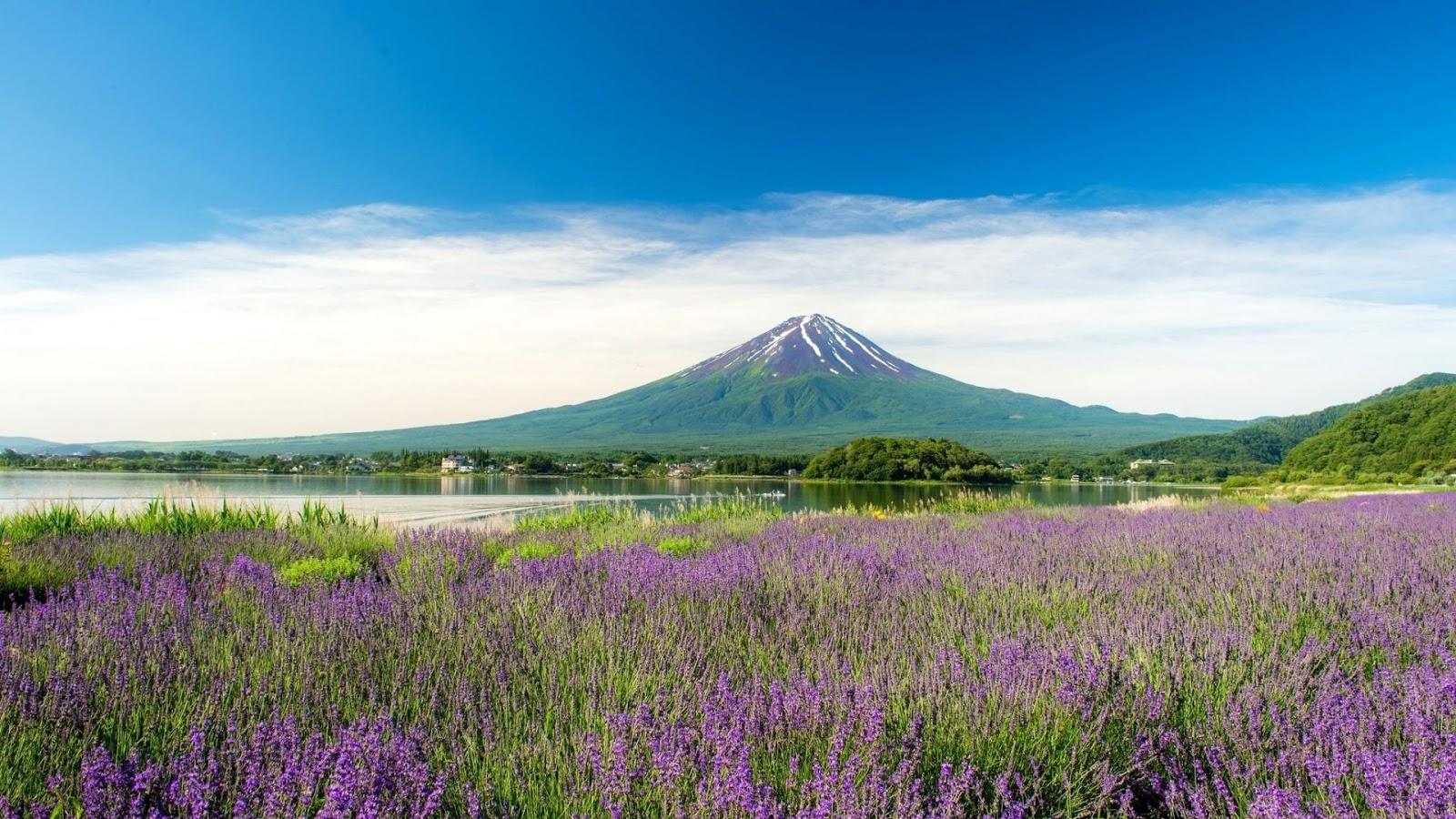 36 Gambar Pemandangan Gunung Yang Bikin Pengen Muncak Gambar