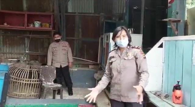 Polisi Gerebek Tempat Sabung Ayam di Pondok Tinggi