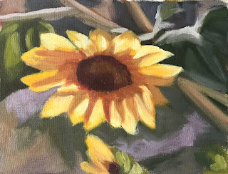 composing values study of sunflower Jan-31-2019