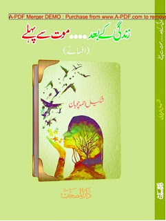 Zindagi Kay Baad Muot Say Pehlay Novel By Shakeel Ahmed Chohan Read Online