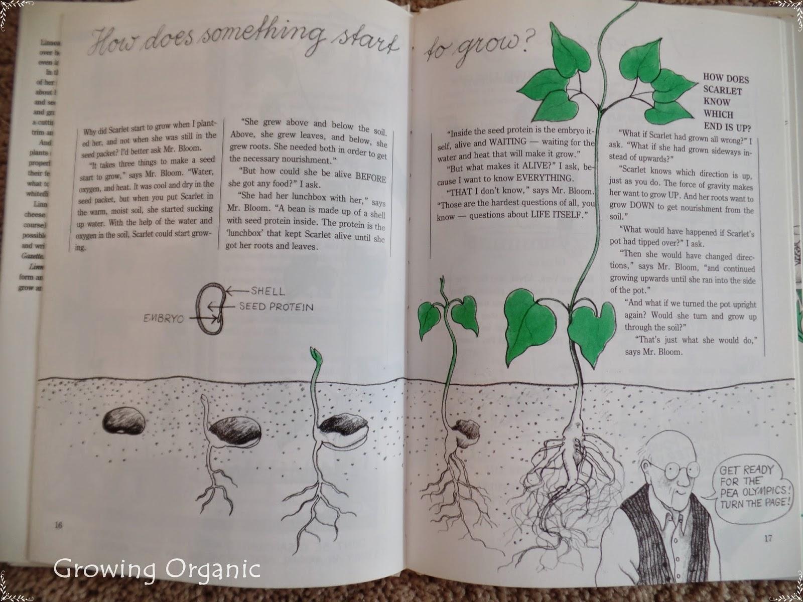 Growing Organic Garden Books For Children Inspire The