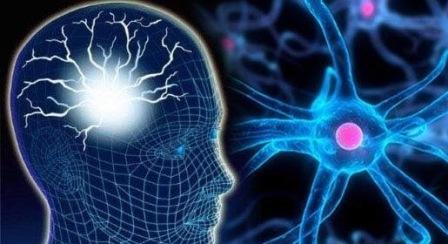 Malfungsi Otak Paling Mengagumkan