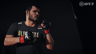 EA Sports UFC 3 Nintendo Wallpaper