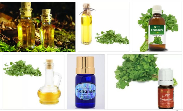 Coriander Oil for Diabetes