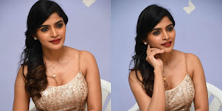 Sanchita Shetty At Party Movie Audio Launch Photos, Ramya Krishna's Daughter Sanchita Shetty Photos!