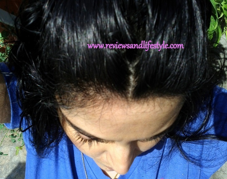 Shiny Glossy Healthy Hair Colored With Henna And Indigo