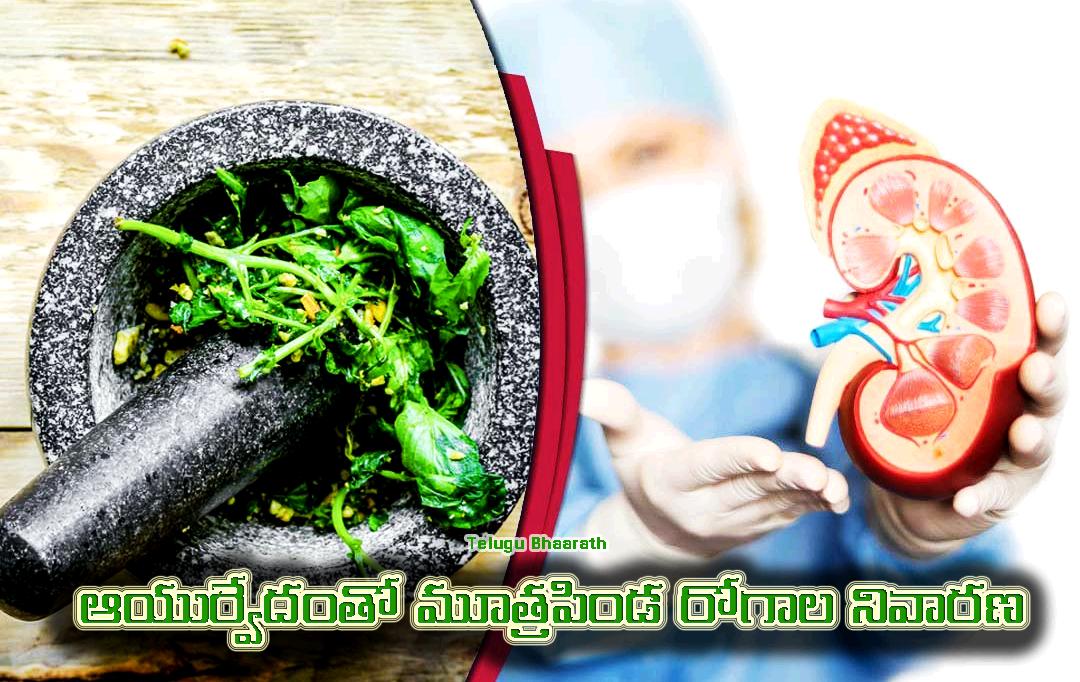 ఆయుర్వేదంతో మూత్రపిండ రోగాల నివారణ - Mutrapinda Rogala Nivarana, Kidney Health
