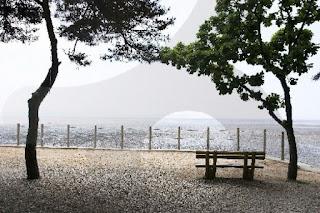 beach on South Korea Honeymoon Package