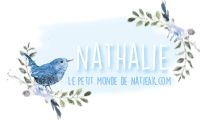 Le petit monde de NatieAK blog lifestyle parisien