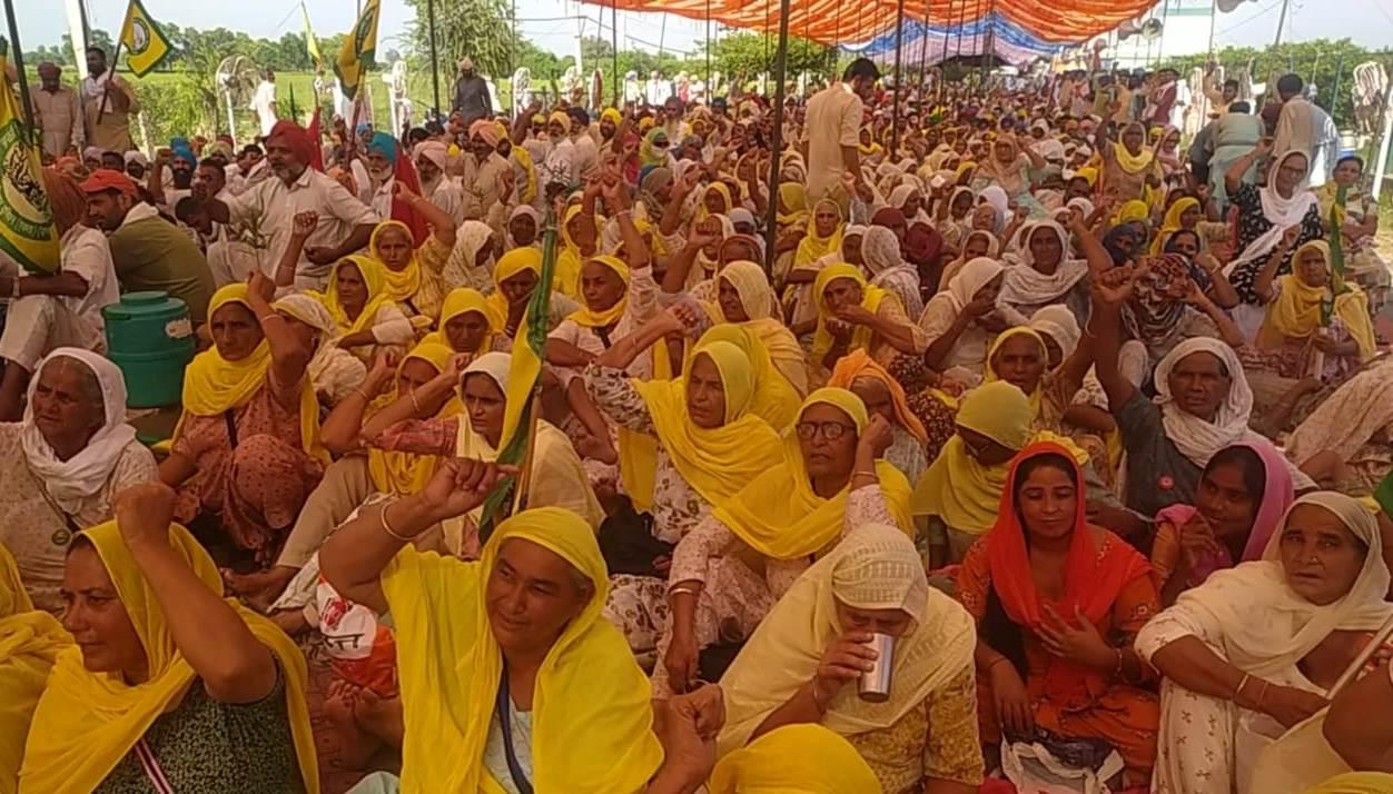 किसानो की सरकार के साथ  चंडीगढ़ में होने वाली मीटिंग रद्द, अब बनाएंगे अगली रणनीति