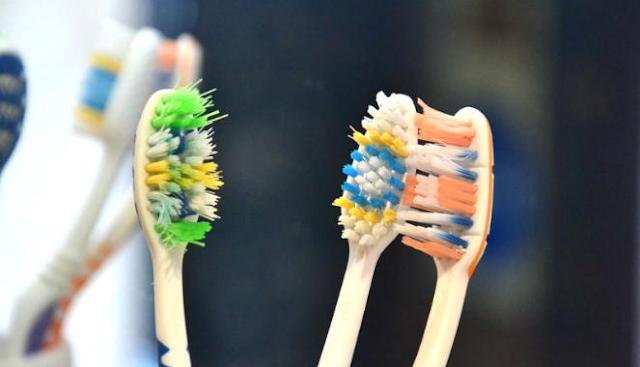 WASPADA!! Penelitian: 60 Persen Sikat Gigi di Kamar Mandi, Ada Bakteri yang Berpindah dari Kotoran Anus ke Mulut