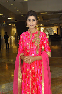 Shamil Cute Telugu Model in Pink Anarkali Dress at Hi Life Exhibition curtain raiser 23rd March 2017